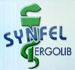 Logo Synfel