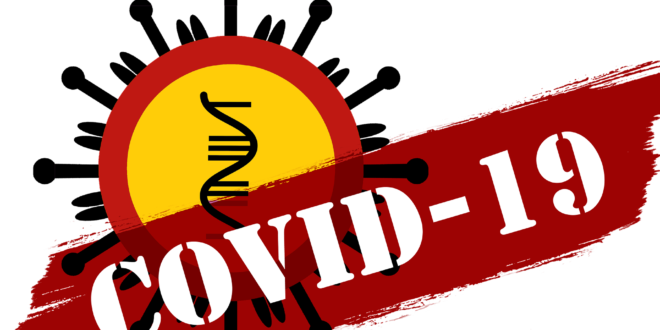 image du virus covid-19